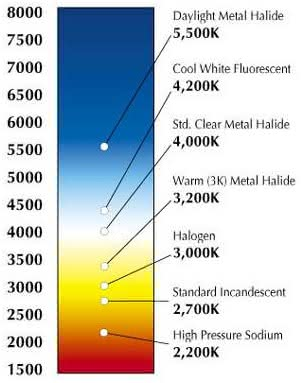 LED Lights: What is the difference between Warm White and
