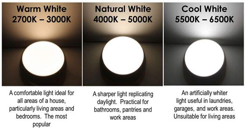 cool daylight vs warm white vs natural white