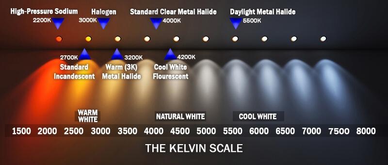 understanding kelvin in lighting