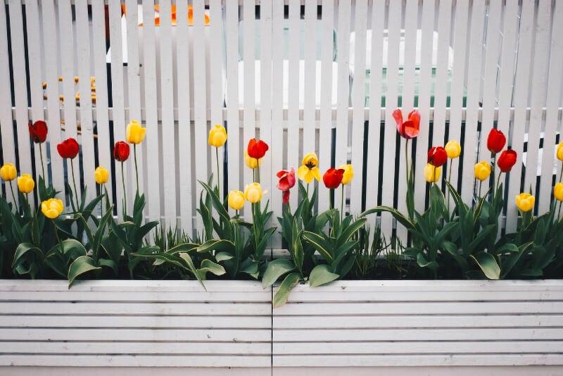 garden fencing tips